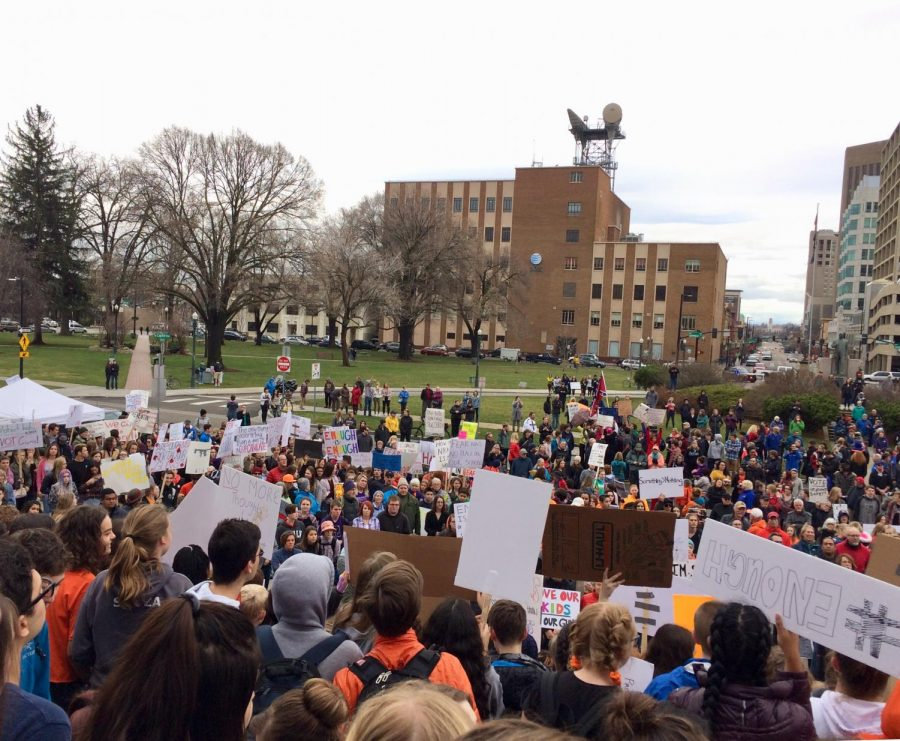 Students+wave+homemade+signs+outside+the+capitol+building+Wednesday+as+they+protested+stronger+gun+restrictions+in+Idaho+and+the+United+States.