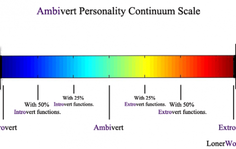Introvert or Extrovert: Which Are You?