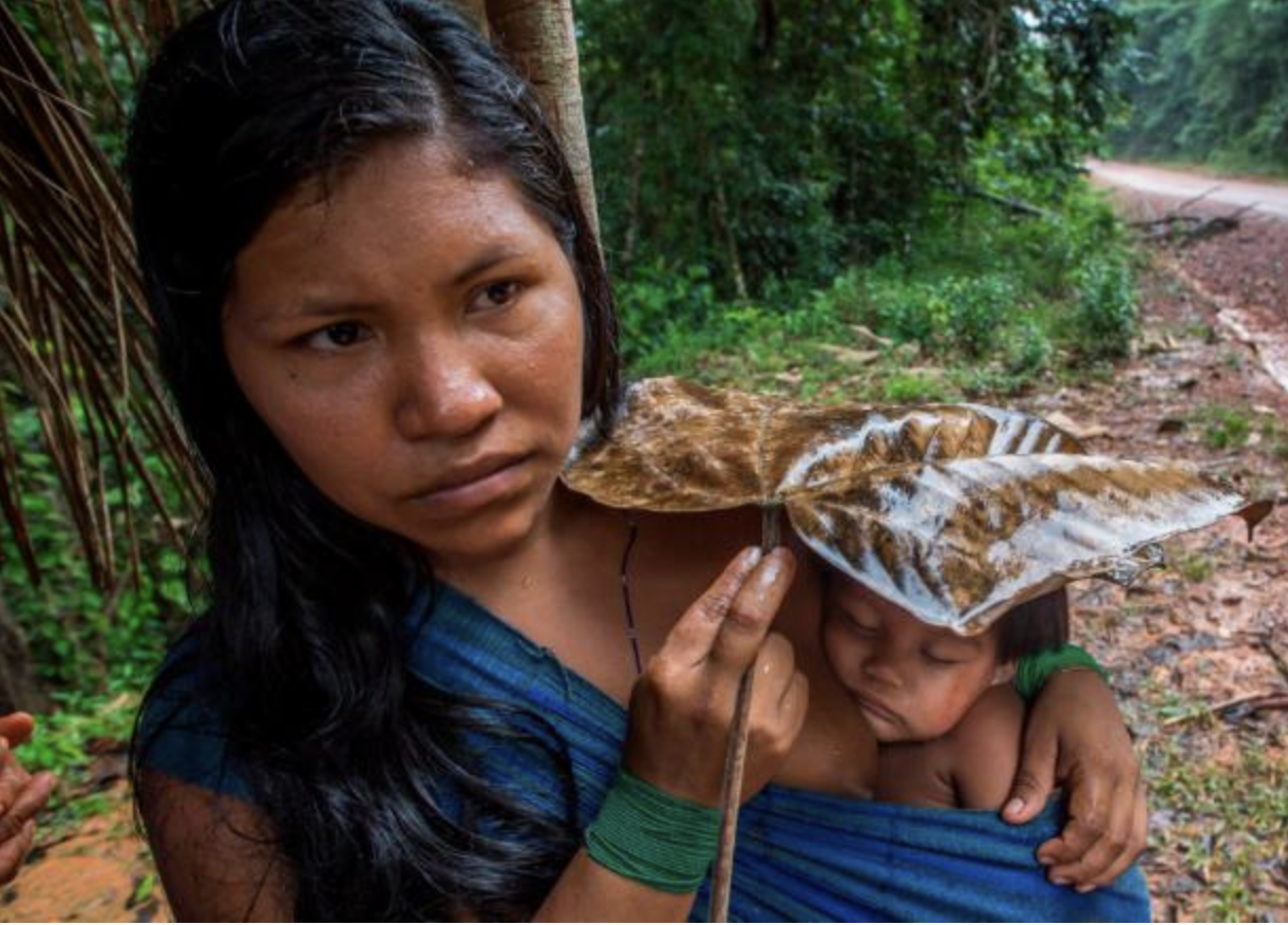 A prime example of indigenous people's dependence on the Amazon as Karuwaniru Waiapi, from the Waiapi tribe, shields her son from the rain using a leaf.