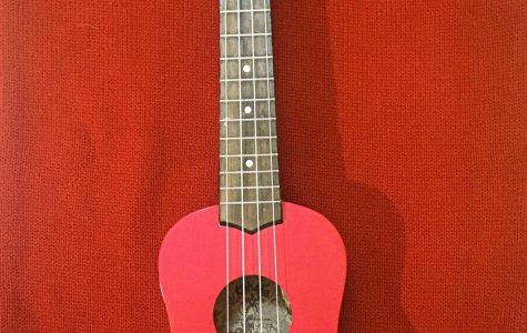 Songwriters at Boise High play a number of instruments, from the ukulele (pictured) to the drums.