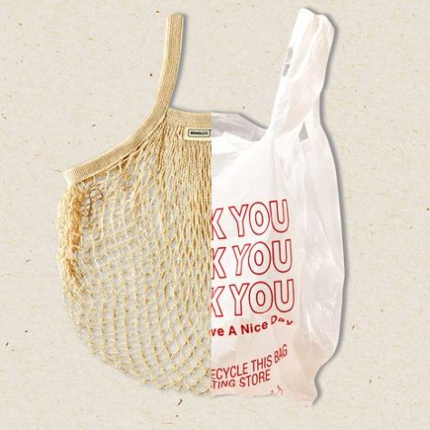 An image displaying the difference between a one use plastic bag and a reusable grocery bag, showing the small changes necessary for a zero-waste lifestyle. Photo credit: Erin Lux (harpersbazaar.com)
